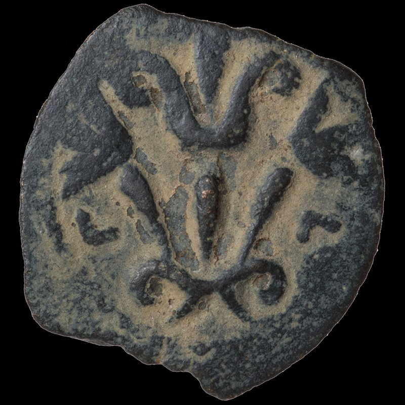 Prutah of Valerius Gratus depicting three lilies (16 CE) - Reverse