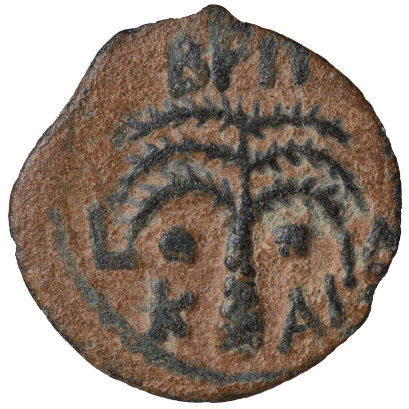 Prutah of Antonius Felix depicting two shields and javelins and a palm tree (54-60 CE) - Reverse