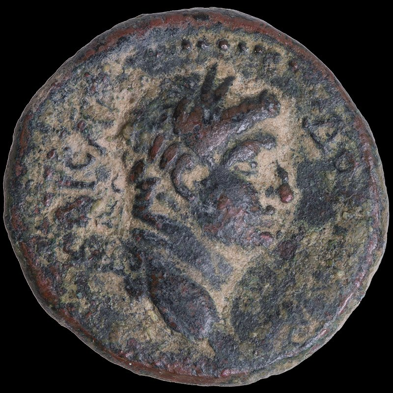 Coin of Herod Agrippa II depicting the head of Domitian and Nikē-Victoria (74-75 CE) - Obverse