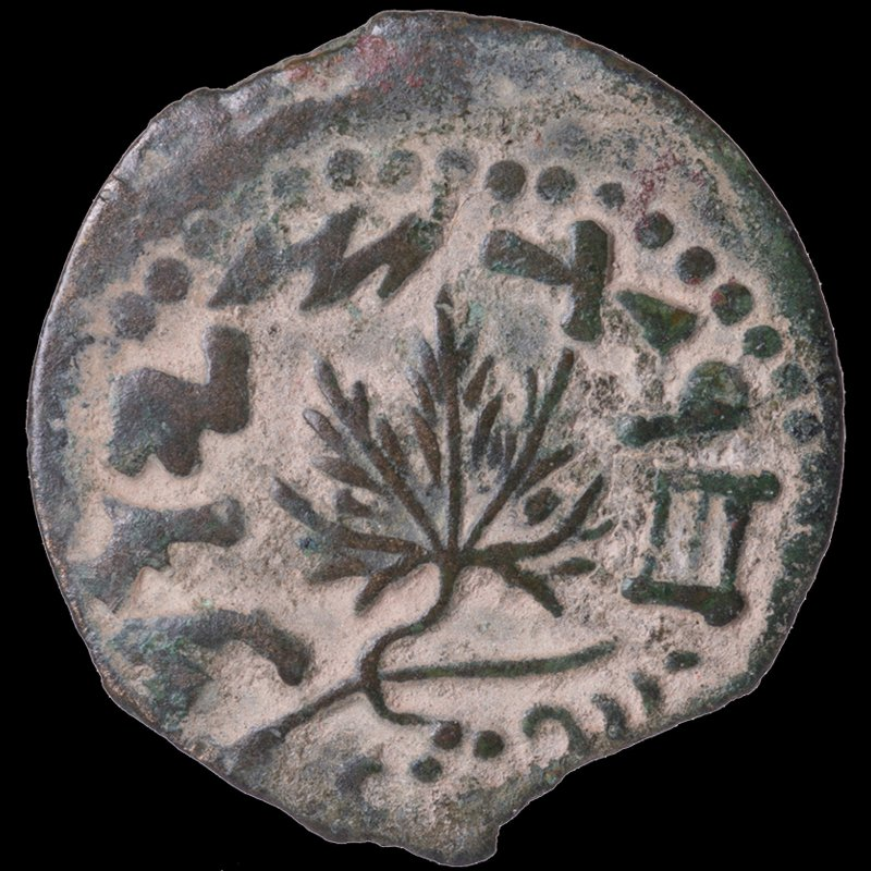 Prutah of the Jewish Commonwealth depicting an amphora and a vine leaf (67-68 CE) - Reverse