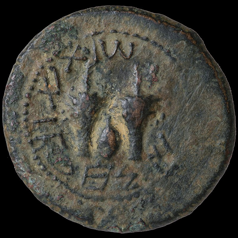 Half Shekel of the Jewish Commonwealth depicting a palm tree and the Four Species (69-70 CE) - Reverse